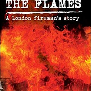 beyond the flames cover